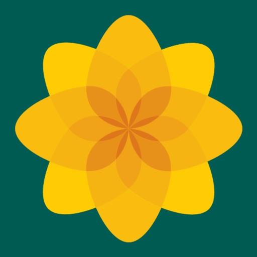 Plaid Cymru Action Centre-SocialPeta