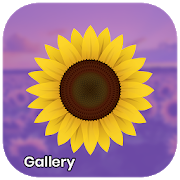 Gallery - Photo and Video Player-SocialPeta