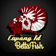 Cupangid Bettafish-SocialPeta