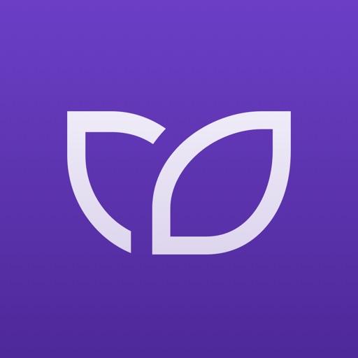 Kontist Geschäftskonto-SocialPeta