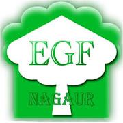 EGF Academy-SocialPeta