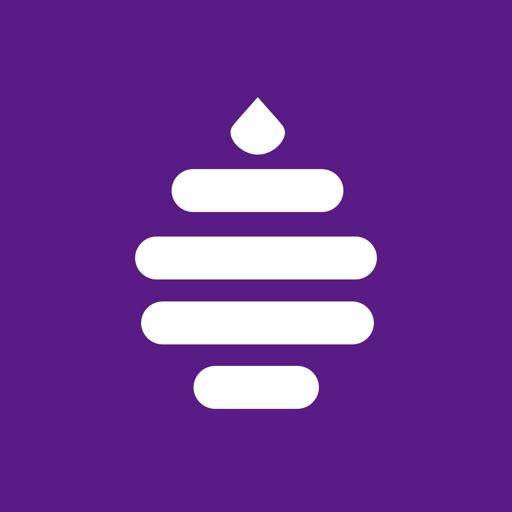 Hibee - Vlog language learning-SocialPeta