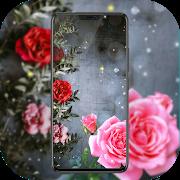 Kernel Wallpaper-SocialPeta