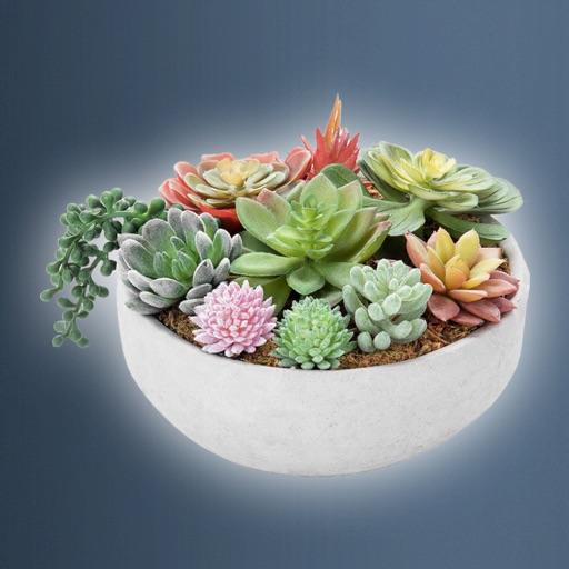 Idle Plant Pot 3D-SocialPeta