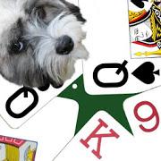 K9 Sheepshead: (Schafkopf) Trick-taking Card Game-SocialPeta